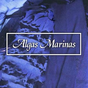2. Algas Marinas